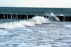 Bunen als Wellenbrecher