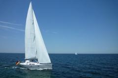 Die Freiheit auf dem Meer